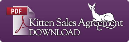 Download Our Kitten Sales Agreement